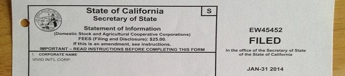 注册成立美国公司 - 公司信息资料 (Statement of information)